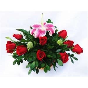 Melissa 12 rosas