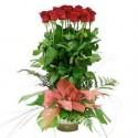 Irene 12 rosas