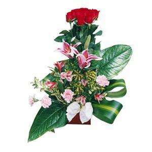 """Fantasy"" 12 rosas"