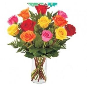 Katherine color 12 rosas