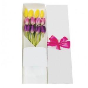 12 tulipanes en caja
