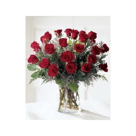 Katherine 24 rosas