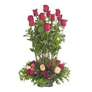 Jazmin 18 rosas