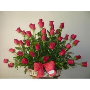 Sofia 36 roses